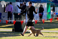 Junior Kennel Club of NSW